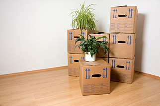 Move Office Furniture